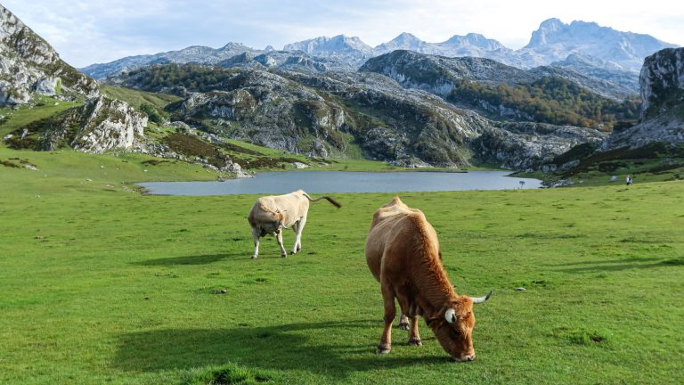 Hiking Picos de Europa – Winding Roads and Glacial Lakes